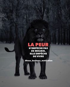 Online Business and Digital Marketing Platform Gentleman Rules, French Quotes, Entrepreneur Inspiration, Mindset Quotes, Sweet Words, Business Motivation, Email Marketing, Digital Marketing, Positive Attitude