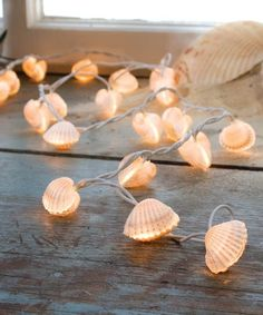 Another great find on #zulily! Seashell Light String #zulilyfinds