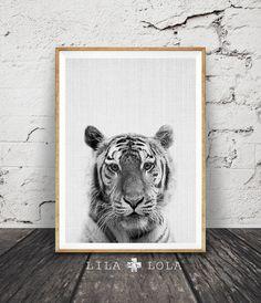 Tiger Print Nursery Animal Wall Art Safari Decor by LILAxLOLA