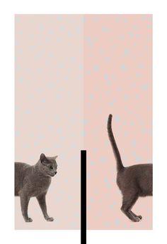 A Poster A Day by Alex Proba