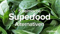 5 heimische Superfood Alternativen | comuvo Blog