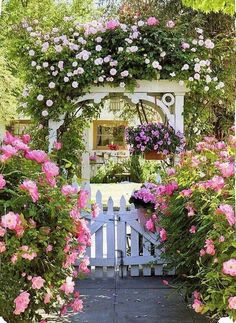 Pink Roses around a white picker arch. Country Gardens