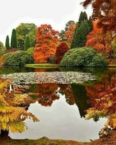 """angel-kiyoss: """" Autumn.. """""""