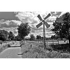Suddenly I see windmills everywhere