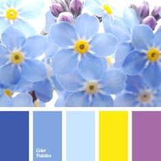 Color Palette #2010