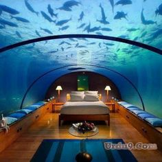 a amazing room | Beautiful Under Water Rooms Amazing (Room Images) ~ Everything Here