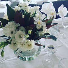 White affair of Phalaeonopsis orchid spray lisianthus freesia daisy chrysies with magnolia foliage $100