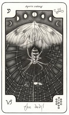 the devil (card 15) The Sylph Deck illustrated byTyran Grillo