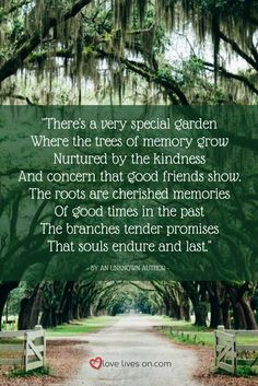 Planting a memorial tree is a beautiful way to celebrate the life of a loved one and bring a personal touch to their funeral, memorial service or celebration of life. Here are 77+ best places for memorial trees & benches in Canada.