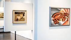 Section of the collection of Alberto Della Ragione / Second Futurism #MuseoNovecento #art #modernart #museum #florence