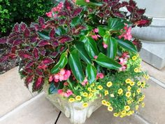 great article on container gardening