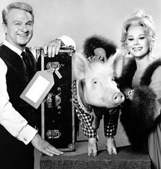 Green Acres - Oliver and Lisa Douglas with Arnold the pig. The song still sticks in my mind. Eddie Arnold really was an organic farmer...vertical.