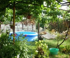 property, house in STAROSELETS, VARNA, Bulgaria - 2 bedrooms house, 900 sq.m. garden, 36 km. to Varna