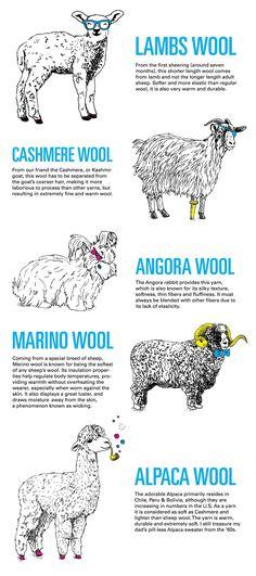 Découvrez quels sont les différents types de laines pour faire du tricot ou pour choisir une écharpe, les différentes sortes de laines.