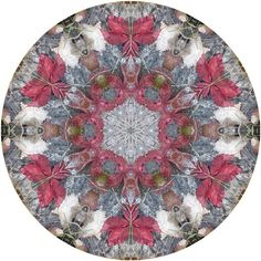 Nature Mandala Art Print No. 246