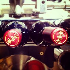 Our 2012 Washington State Cuvée is moving down the line!!