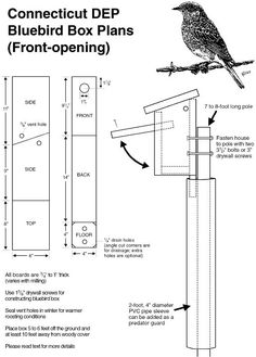 Eastern Bluebird House Plans Free New Info for Bluebird Nest Boxes Bluebird House Plans, Bird House Plans Free, Bird House Kits, Blue Bird House, Bat House Plans, Bluebird Nest, Bird House Feeder, Bird Feeders, Squirrel Feeder