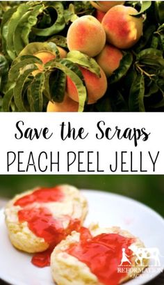 Don't throw away your scraps! Save the peach peels to make a delicious Peach Peel Jelly! Jelly Recipes, Jam Recipes, Canning Recipes, Canning Vegetables, Veggies, Ketchup, Chutney, Peach Jelly, Peach Fruit