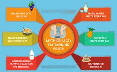 Don't be mislead!  Truths about the foods you thought that burns fat.