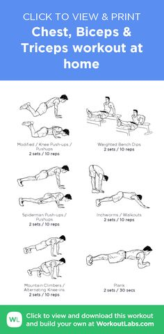 Chest, Biceps & Triceps workout at home · WorkoutLabs Fit - Chest And Bicep Workout, Biceps Workout At Home, Calisthenics Workout Plan, Chest Workout For Men, Forearm Workout, Home Workout Men, Workout Routine For Men, Gym Workout For Beginners, Gym Workout Tips