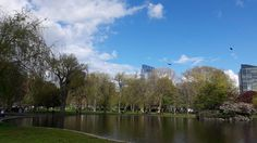 #Boston #PublicGarden #Peaceful #Massachusetts #NewEngland #USA #francaisauxusa #AuPair #AuPairLife #Bluesky #latergram #Sunday #May #Spring #Trees #River #Water #clouds #familymoments #Walking #Beautiful #Day | Photo de @stefany_rml