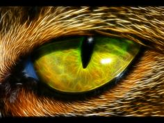 widescreen backgrounds eye  by Coburn Gordon (2017-03-19)