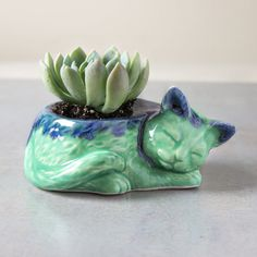Kitty planter ceramic no concrete succulent by blueroompottery