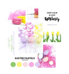 New Collections: APRIL 2019 — Lollipop Stock Membership - Premium Stock Photos For Your Creative Needs! Twitter Banner, Facebook Banner, Website Images, Blog Images, Marketing Plan, Media Marketing, Image Newsletter, Business Stock Photos, Spring Photos