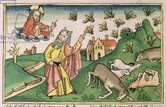 Exodus 8 20-32 The Seven Plagues of Egypt: Moses and the swarm of flies, from the 'Nuremberg Bible (Biblia Sacra Germanaica)' (coloured woodcut), 1483