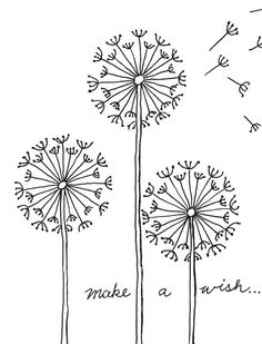 Drawing in the round will make a very pretty dandelion. #dandelion #howtodraw