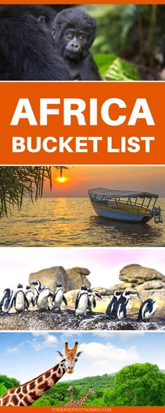 Your Africa bucket list for this amazing continent that Get Around is an online store offering a selection of funny travel clothes for world explorers Check out for funny. Africa Destinations, Travel Destinations, Travel Tips, Travel Hacks, Holiday Destinations, Travel Ideas, Gorillas In The Wild, Travel Humor, Funny Travel