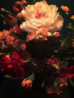 Peonia flowers