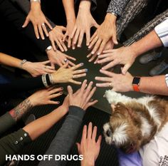 Red Ribbon Week - We keep our hands (and paws) off drugs! Red Ribbon Week, Our Kids, Social Studies, Drugs, Hands, Sociology, Social Science