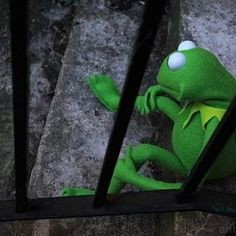 Kermit in jail Shrek, Sapo Frog, Sapo Kermit, Funny Cute, Hilarious, Frog Pictures, Kermit The Frog, Funny Video Memes, Jim Henson