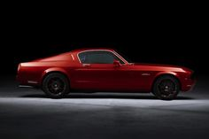 The New Equus Bass 770