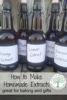 Make your own extracts for delicious baking and gift giving! The possibilites are endless, and the recipes are easy to follow! The Homesteading Hippy Homemade Spices, Homemade Seasonings, How To Make Homemade, Homemade Breads, Homemade Dry Mixes, Homemade Food Gifts, Do It Yourself Food, Masterchef, Milk Shakes