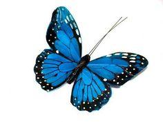 Blues butterfly tattoo
