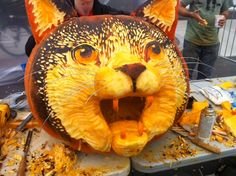 amazing carved pumpkin cat - jack o latern - halloween pumpkin carvings #halloween #pumpkins