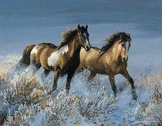 Winter Sage-Wild Horses|WildWings