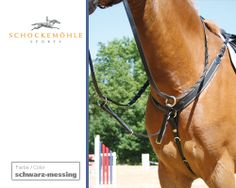 An all round breastplate, flexible breast straps made of two-colorways elastic. The adjustable martingale fork can be taken off. The breast strap is equipped with two rings for aiding reins. Fork, Equestrian, Breast, Horses, Rings, Sports, Animals, Hs Sports, Animaux