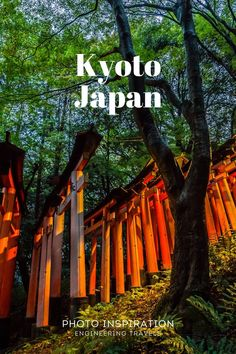 China Travel, Bali Travel, Travel Abroad, Travel Usa, Tokyo Japan Travel, Japan Travel Guide, Travel Advice, Travel Guides, Zen Rock