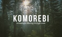 28 Beautiful Words The English Language Should Steal - This one is Japanese.