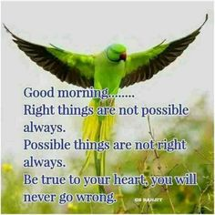 True to yrself Happy Morning Quotes, Morning Thoughts, Morning Texts, Morning Greetings Quotes, Good Morning Happy, Good Morning Messages, Good Morning Wishes, Morning Status, Morning Sayings