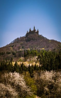 Hohenzollern castle, Germany. By MB Photography