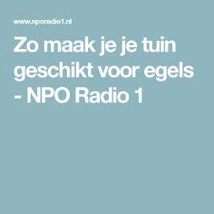 Zo maak je je tuin geschikt voor egels - NPO Radio 1