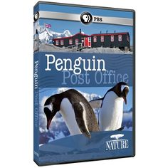 Nature: Penguin Post Office | May 2015