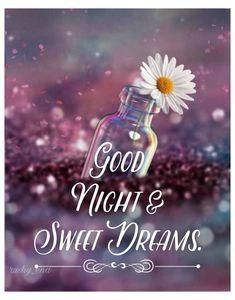 Good Night Love Quotes, Beautiful Good Night Images, Good Night Prayer, Cute Good Night, Good Night Blessings, Good Night Sweet Dreams, Good Morning Good Night, Goodnight And Sweet Dreams, Goid Night