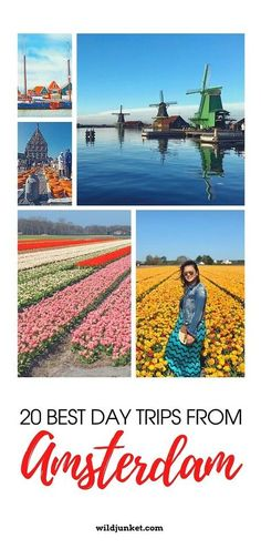 Best Day Trips from Amsterdam - According to An Expat! #netherlands #NLtravel #europetravel #netherlandstravel #amsterdamtravel #amsterdamdaytrips #amsterdamnl #keukenhof #windmills #windmilltour #tulipfields #zaanseschans #dutchcountryside #weekendtripamsterdam Day Trips From Amsterdam, Amsterdam Travel, Europe Destinations, Amazing Destinations, Countries To Visit, Places To Visit, European Holidays, Short Trip, City Break