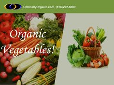 Organic Vegetables- Free of harmful chemicals and pesticides!