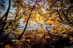Autumn morning... by Aleksei Malygin on 500px